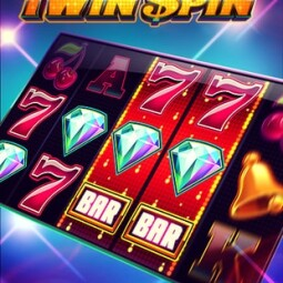 Twin Spin Machine a Sous